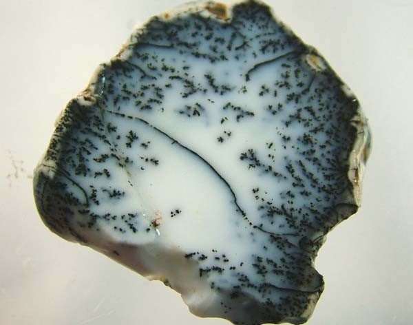 DENDRITIC OPAL ROUGH [FJP2764 ]